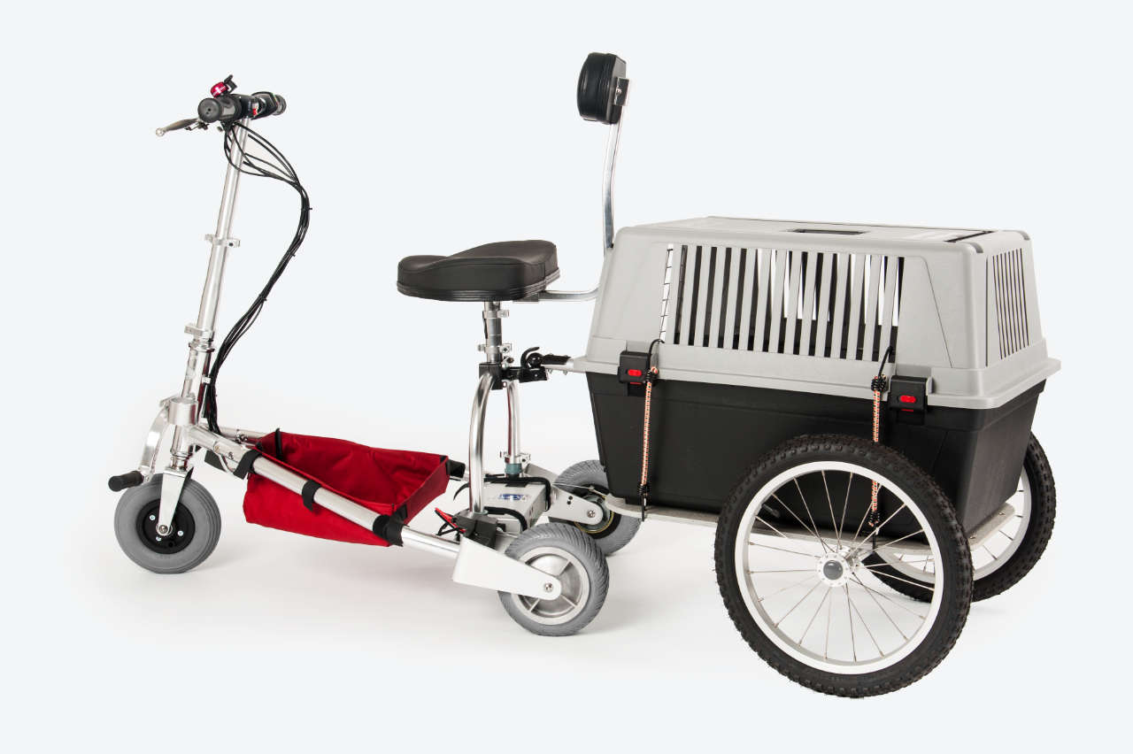 portable TravelScoot